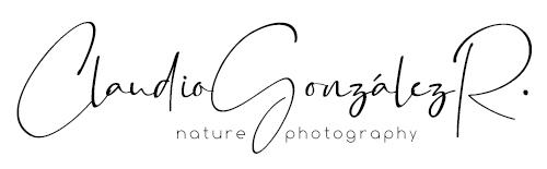 Claudio González Photography